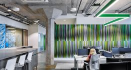 How to Cultivate a Collaborative Work Environment