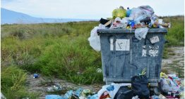 The What, Why and How of Waste Management: Definition, Importance and Ways of Disposal
